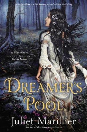Dreamer's Pool book cover