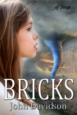 Bricks cover 2