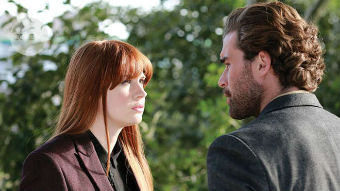 not another happy ending still 2