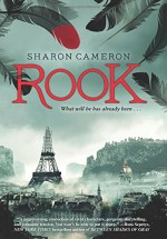 YA Review: Rook is A Rip-Roaring Romance!