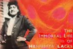 Book Review: The Immortal Life of Henrietta Lacks – Science & (Non) Fiction Collide
