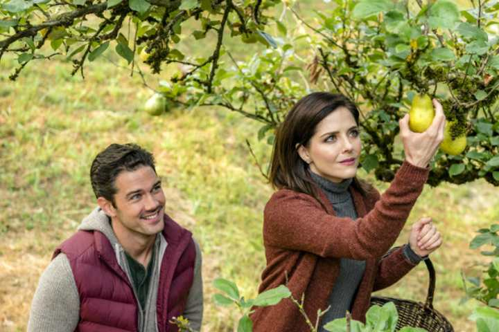 Harvest Love (2017) – Hallmark Romance Visits Small-Town Pear Farm