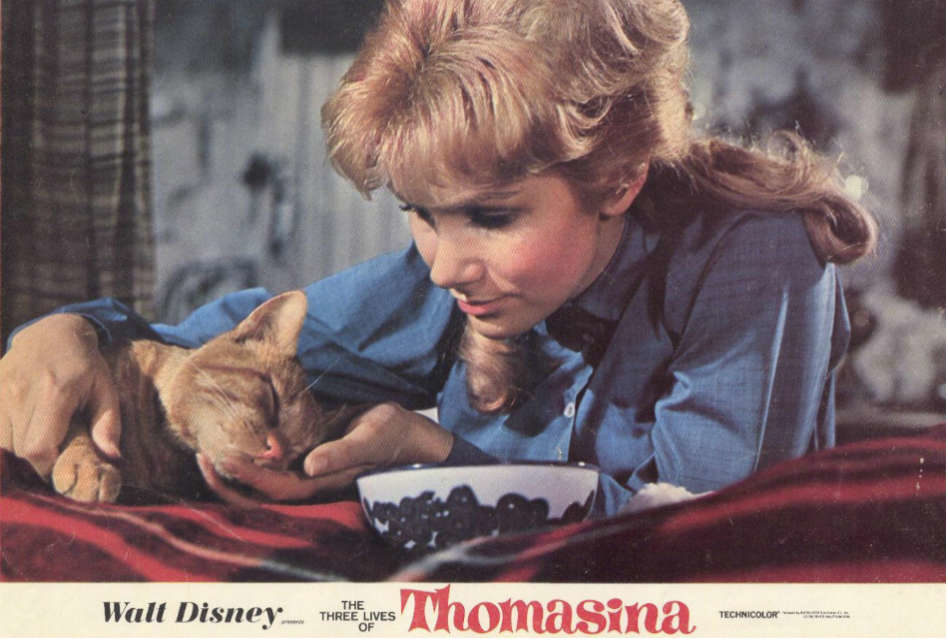 The Three Lives of Thomasina: A Heartwarming Tale of Love and Loss