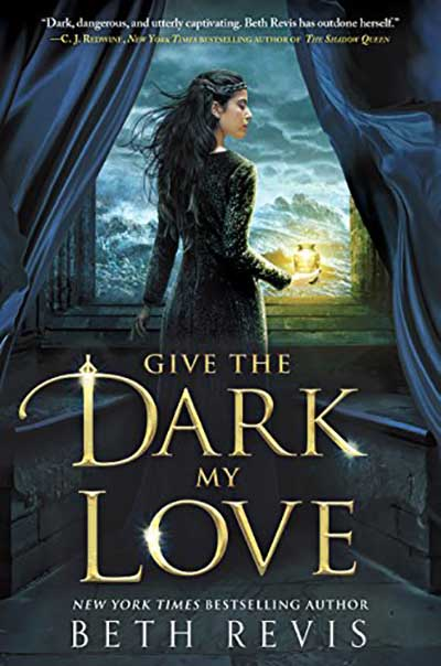 Give the Dark My Love book cover