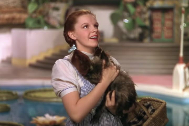 Wizard of Oz Life Lessons, Judy Garland as Dorothy