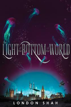 The Light at the Bottom of the World Book Cover