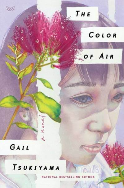 The Color of Air Book Cover